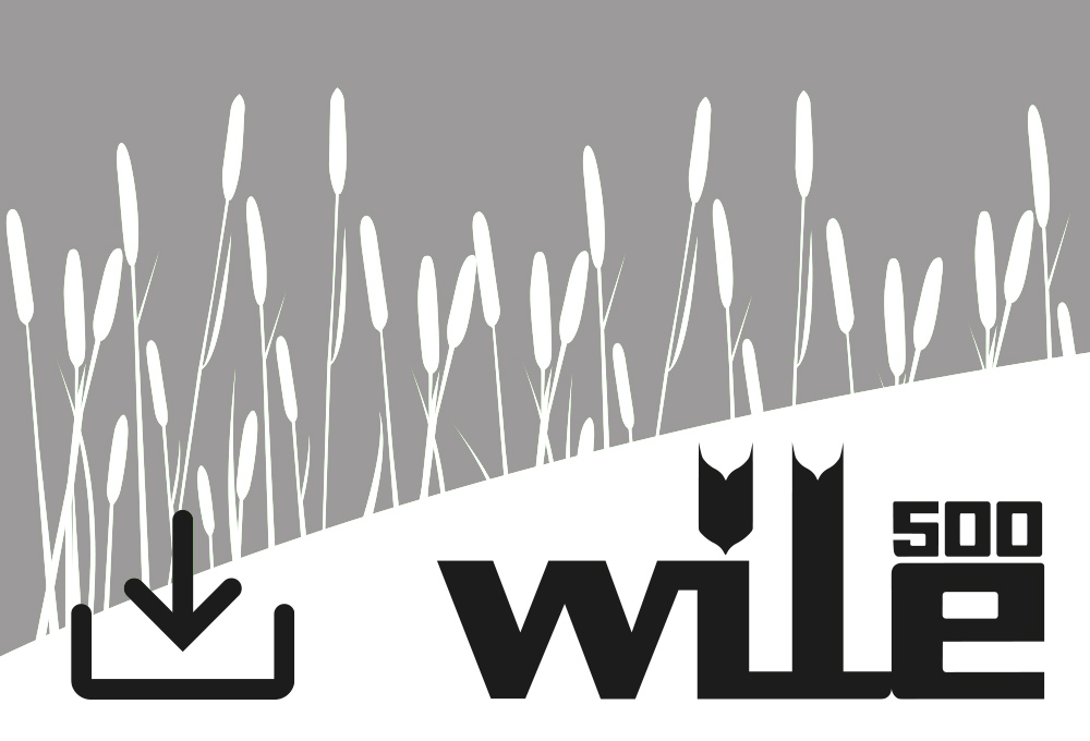 Wile 500 Update Software