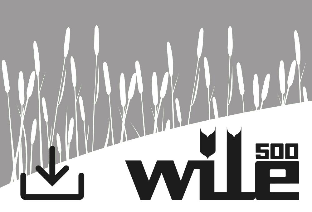 Update-Programm für das Wile 500 Messgerät