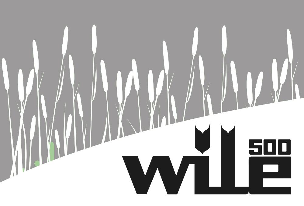 Anleitung für die Nutzung des Wile 500 Update-Programms